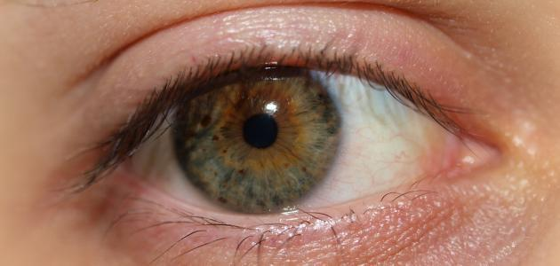 العيون - أسباب جفاف العين : إليك أهم 6 مسببات و طرق العلاج