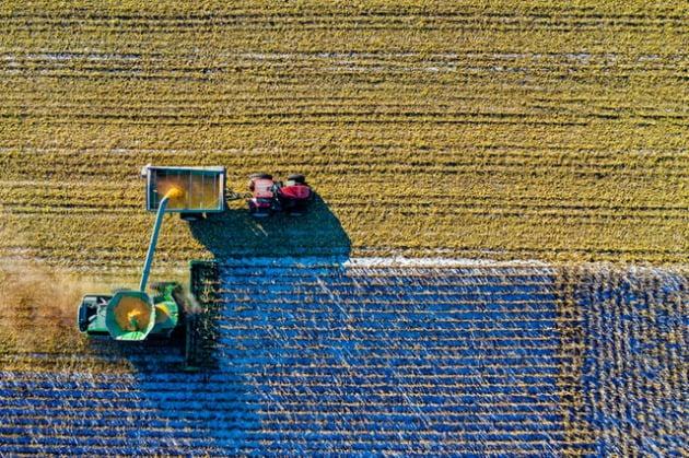 3 - أنواع السماد الكيماوي و استخداماته و فوائد علي التربة