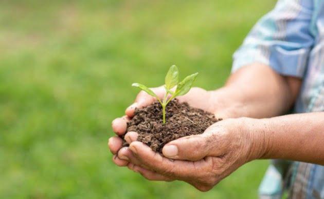 4 - أنواع السماد الكيماوي و استخداماته و فوائد علي التربة