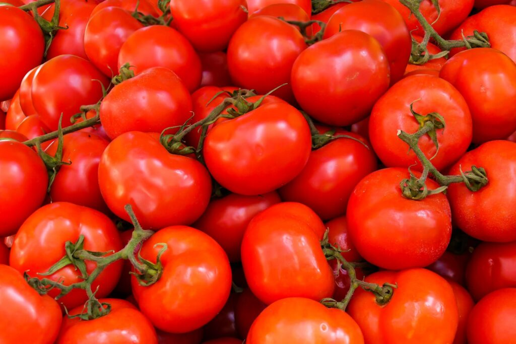 الطماطم الصحية 1024x683 - فوائد الطماطم الصحية و أبرز أنواعها المعروفة بالسوق
